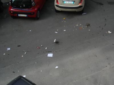 Raccogliendo la spazzatura da un bidone