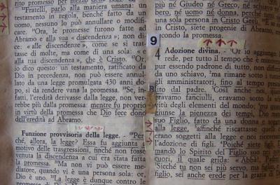 La Bibbia di Bernardo Provenzano