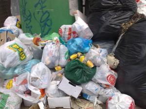 Fufi nella spazzatura
