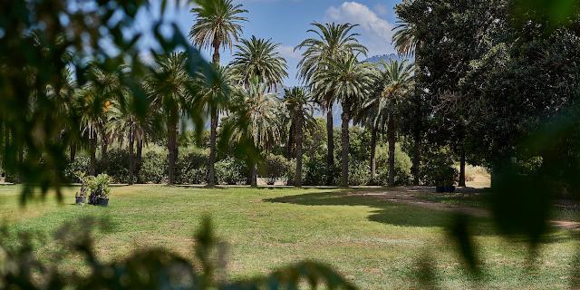 Apre il Parco di Villa Tasca
