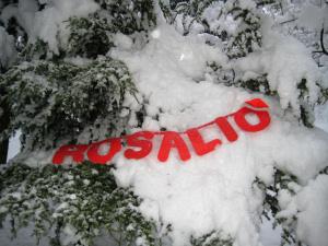 Rosalio sulla neve