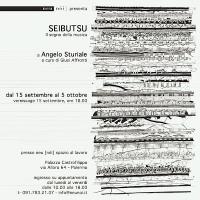 """Angelo Sturiale - """"Seibutsu - Il segno della musica"""""""