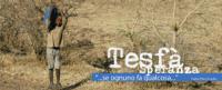 """""""Tesfà"""""""