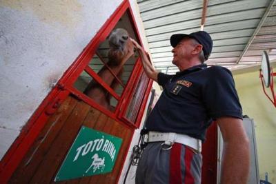 A Napoli in un maneggio abusivo un cavallo di nome Totò Riina