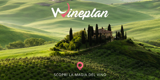 Wineplan