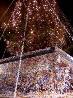 Albero di Natale 2008 (foto tratta dal fotoblog germana8522's photos)