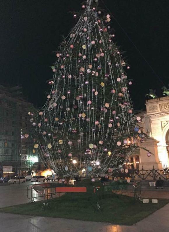 """A piazza Castelnuovo l'""""albero dei desideri"""", ai palermitani non piace"""