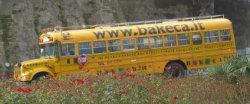 Bus di Bakeca.it