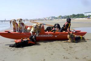 Cani bagnini a Mondello a luglio e ad agosto
