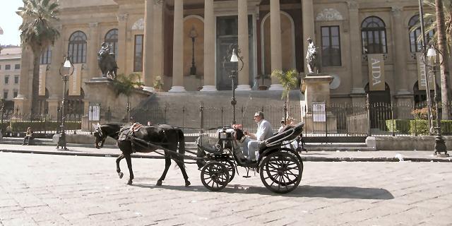 Carrozze trainate dai cavalli, gli animalisti chiedono incontro al prefetto