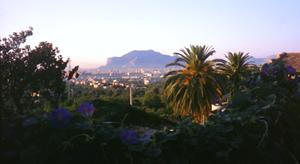 Palermo, palme e limoni