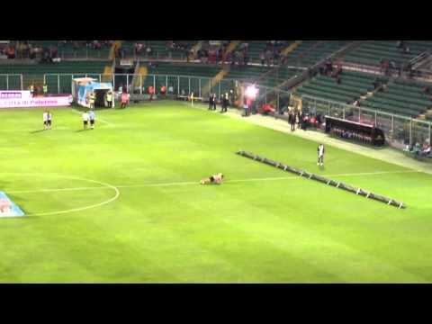 Freestyle Palermo Angelo Florio esibizione prima della partita Palermo-Lazio 0-4