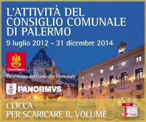 Consiglio Comunale - Palermo