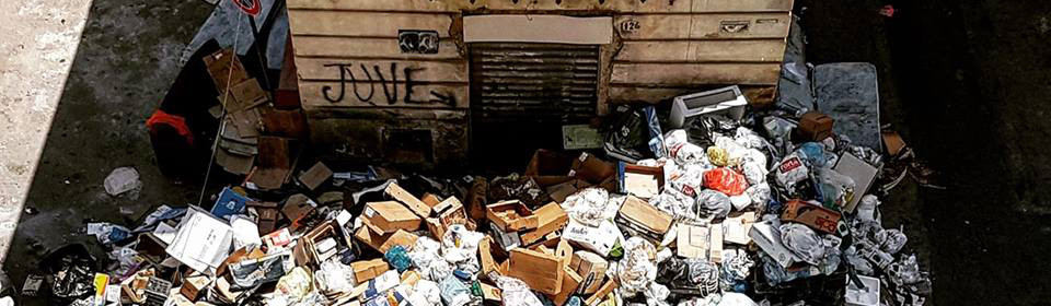 Tutti i post su #emergenza rifiuti