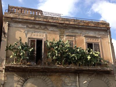 Balcone con fichidindia